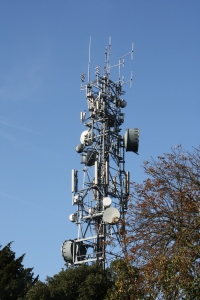Telecomms mast in Oxleas Wood from Shooters Hill Road